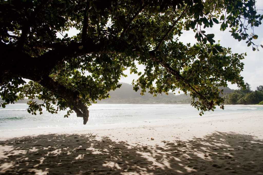 Honeymoon in Seychelles, Seychelles, Evelina Korn photographer, #15634