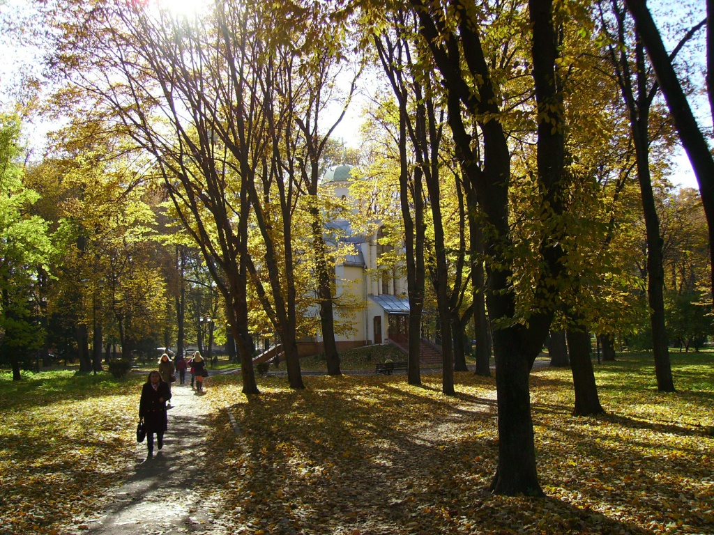 Autumn   in   Ivano - Frankivsk   park