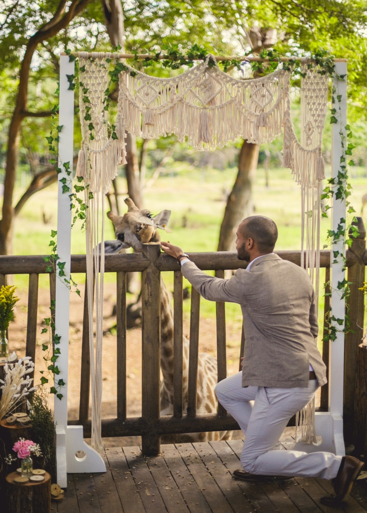 The unique wedding ceremony with giraffes in Mauritius
