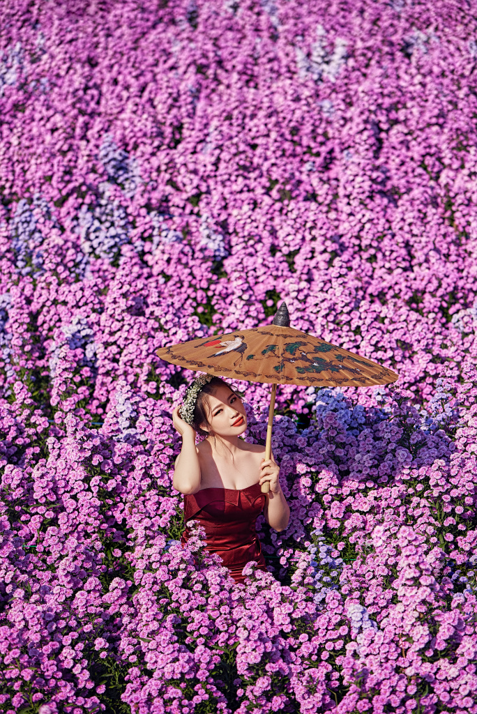 Fashion Photo Shoot - Flower Fields in Mae Rim, near Chiang Mai, Thailand. 